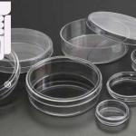 قیمت ظروف پلاستیکی بسته بندی زعفران